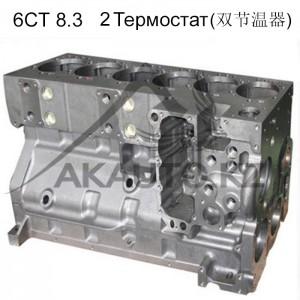 Блок 6СТ - 2Термостат