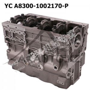 Блок YC A8300-1002170-P