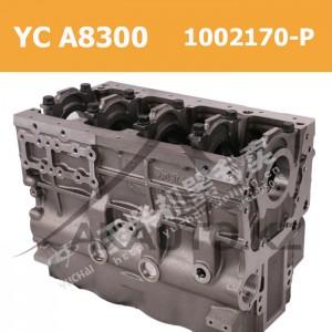 Блок YCA8300 - 1002170-P